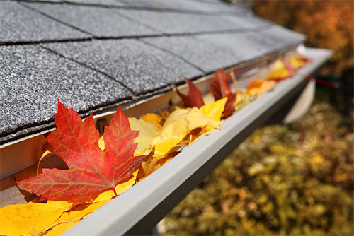 Fall Home Maintenance Tips from Best Waterproofing